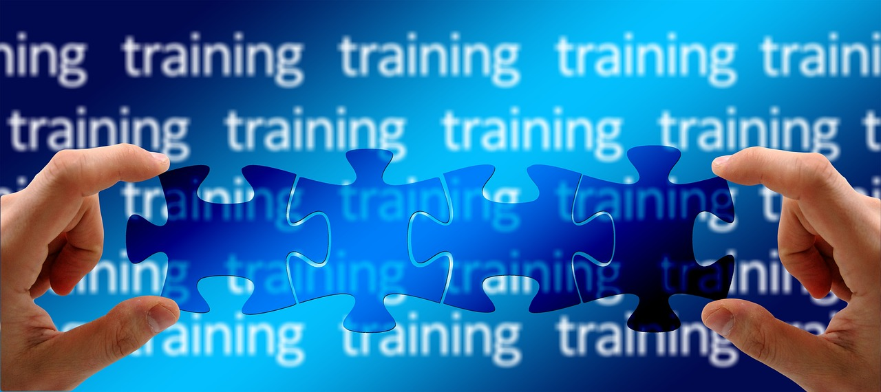 Wealthy Affiliate Online Certification vs Bootcamp